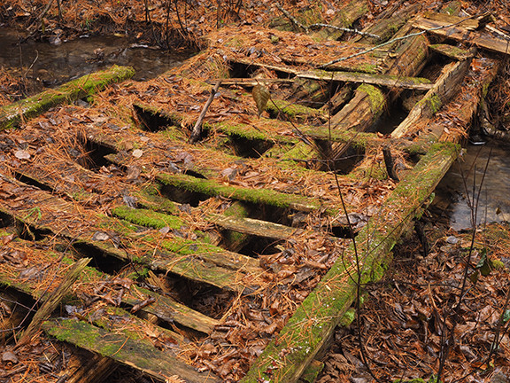 smallened but unedited JPEG - footbridge