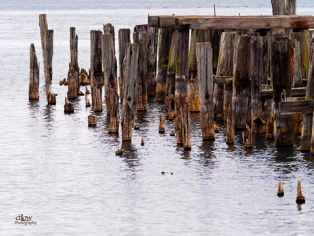 Old, disused pilings Prescott, Ontario
