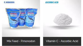 Pakan Dan Vitamin Untuk Ikan dan Udang