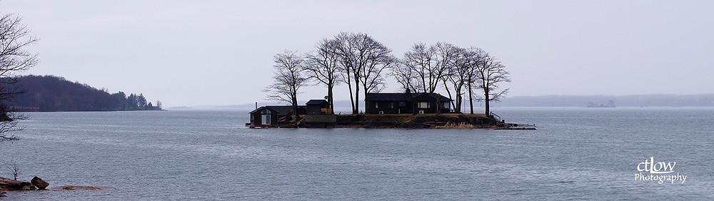 island bare winter branches dusk rain
