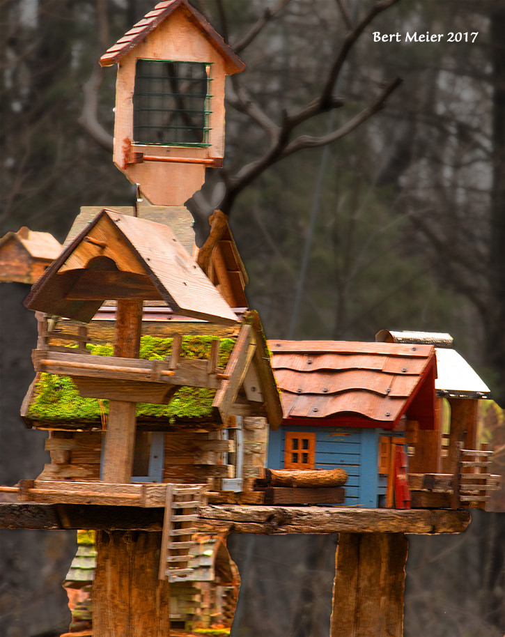 birdhouses and feeders, cropped and enhanced by instructor (me)