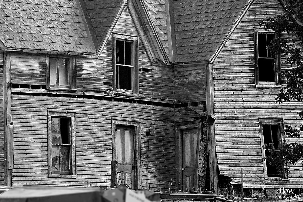 Decrepit House (monochrome)