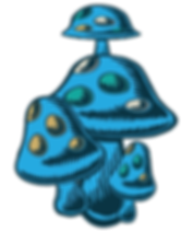 mushrooms-left.png