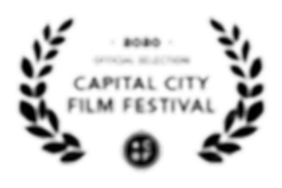 2020 Official Selection Hidden Tigers
