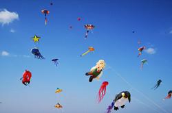 Concours international de cerf-volant