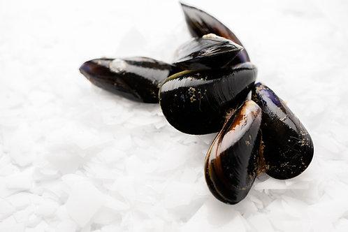 May 27th & 28th Kinkawooka Shellfish 1Kg Pot Ready Mussels