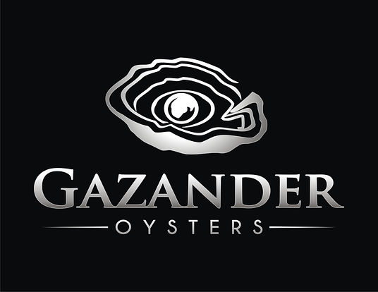 GAZANDER LOGO WHITE ON BLACK.jpg