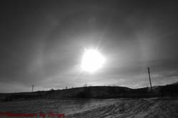 Winter Sun Dogs