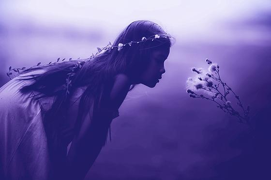 sarah-mak-flowers-recolor.png