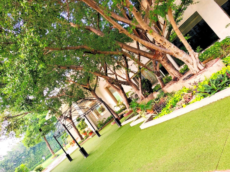 Royal Orchid Garden