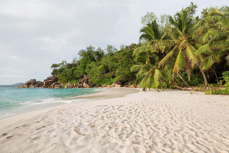 esser-fotografie-praslin-strand-seychellen