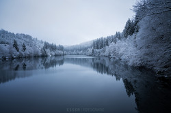 esser-fotografie-forest-winter-lake