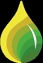 SGB drop logo_edited.png