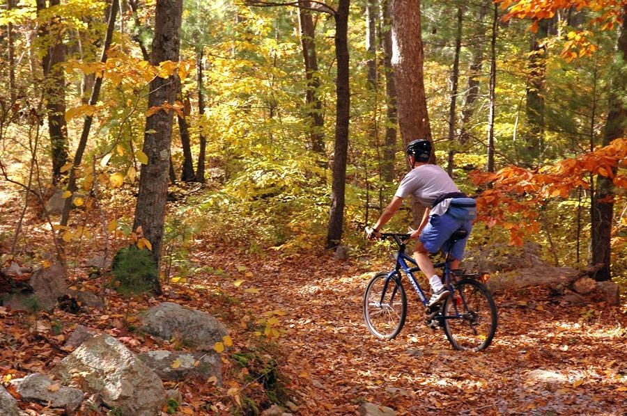 Biking on a Trail