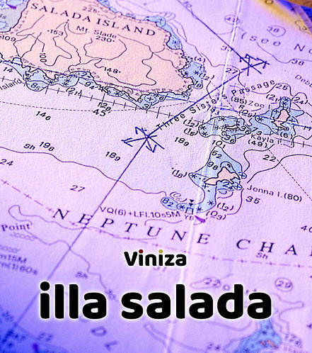 Viniza Illa Salada tinto joven