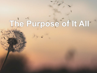 The Purpose of It All