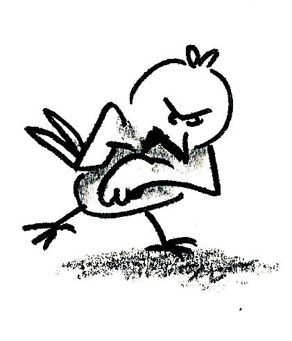 oiseau_fâché