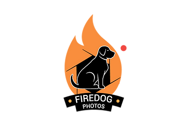 Fire_Dog_Photo_1.png