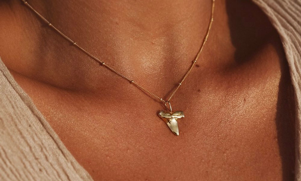 MAHLOE - SHARK TOOTH NECKLACE SILVER/GOLD