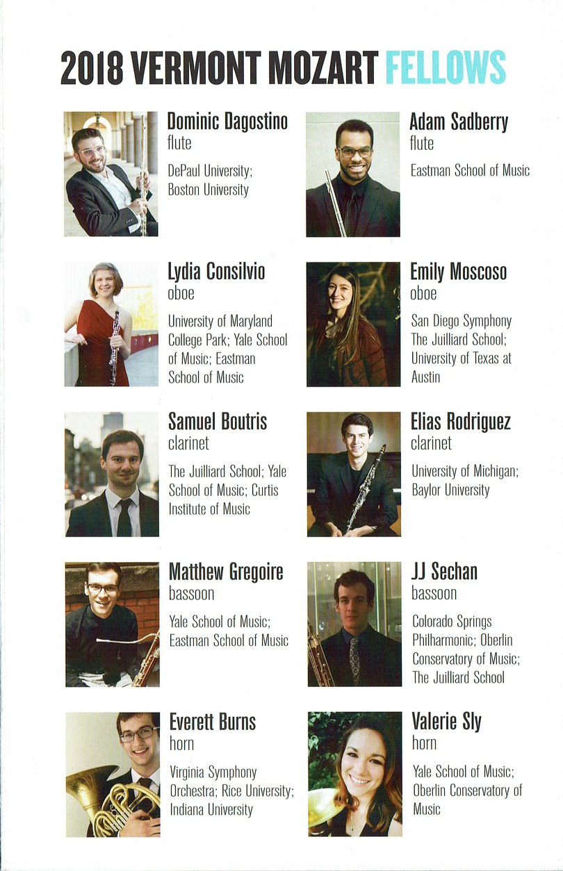 P.1 2018 Fellows.png