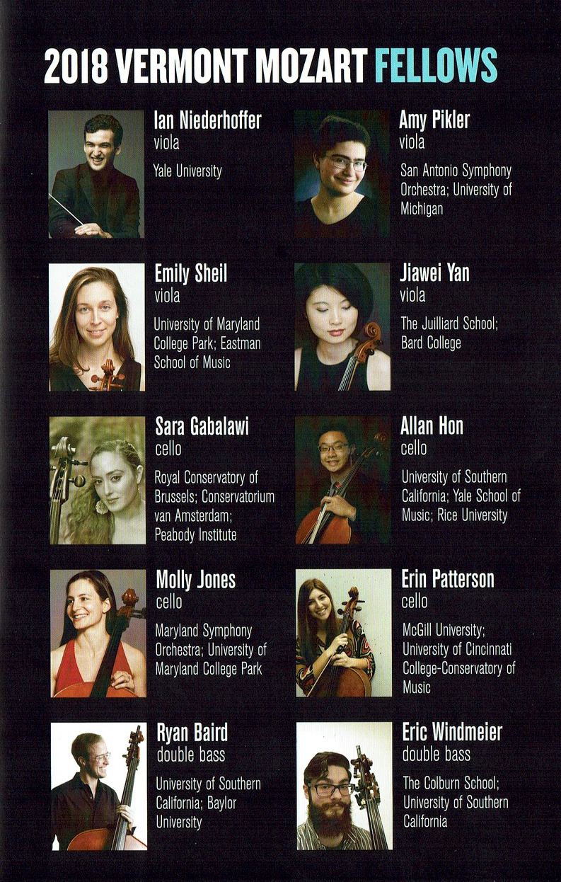 P.3 2018 Fellows.png