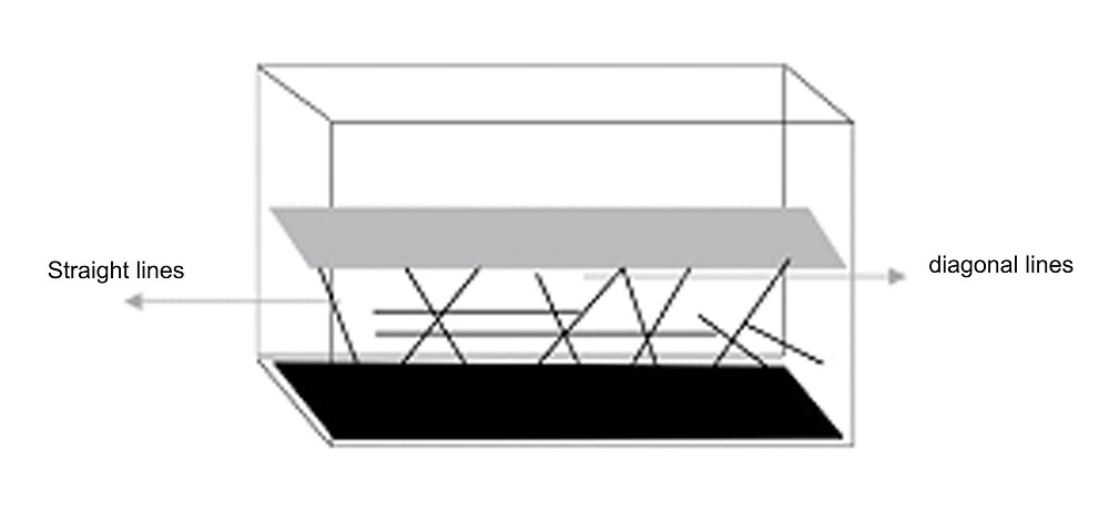 linear arrangement of the right side