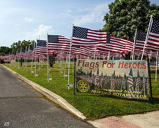 2021 Flags 2.jpg