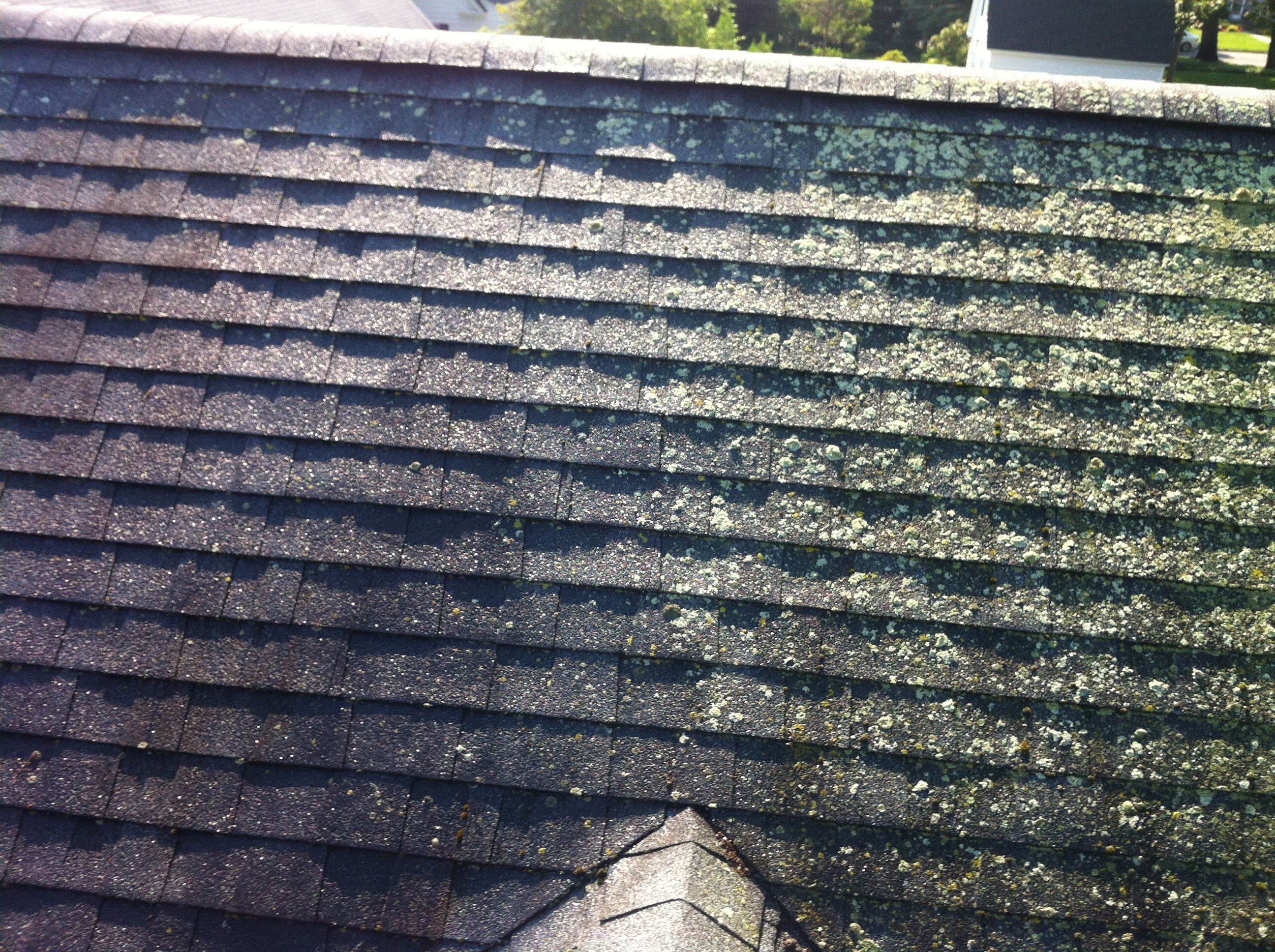 Southampton roof cleaning