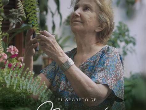 """Norma Aleandro: """"El universo está hecho para el amor"""""""