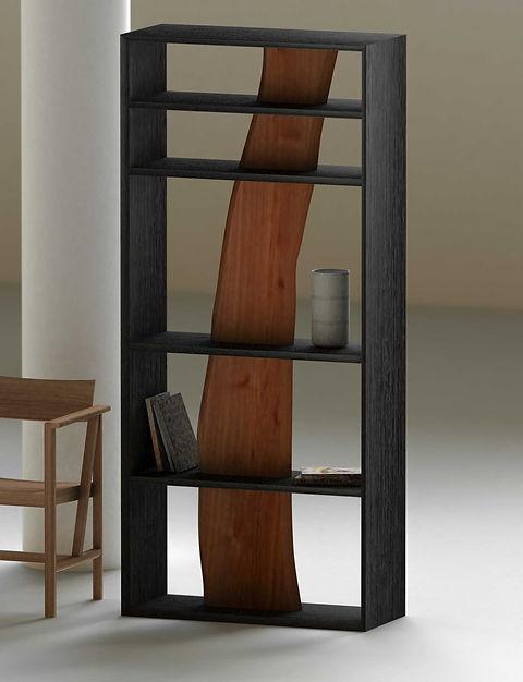 Darakorn Shelf (6).jpg