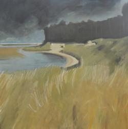 Holkham Water, Grass
