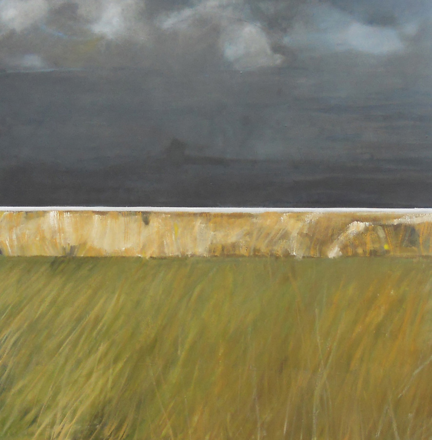 Dark Sky, Grass