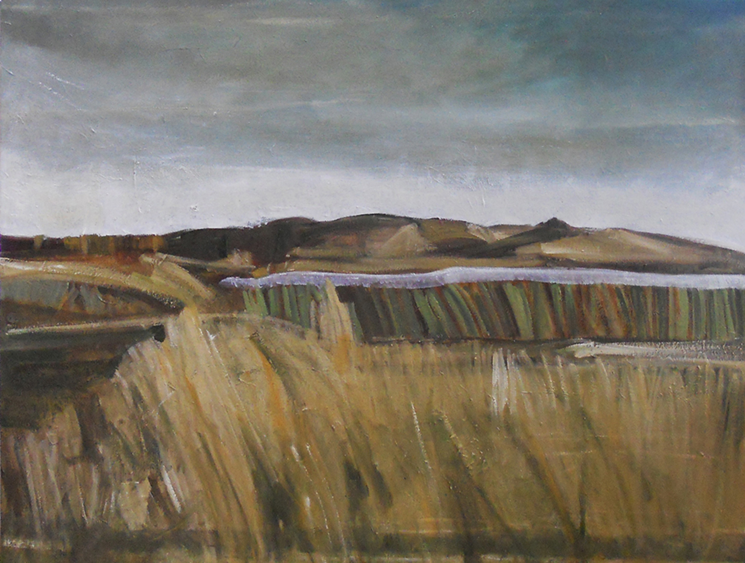 Blakeney Marsh 1