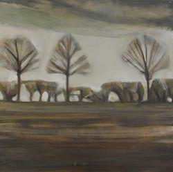 Stibbard Field 1