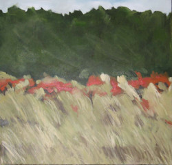 Holkham Grass