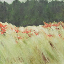 Holkham Grass 3