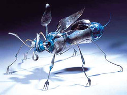 """""""Flying Insect"""""""