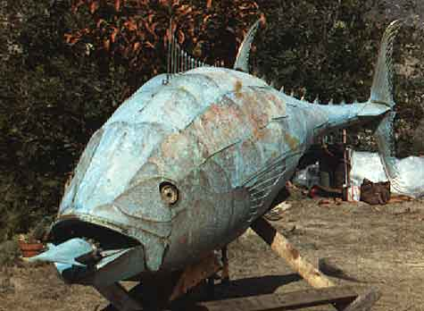 """Bluefin Tuna"""