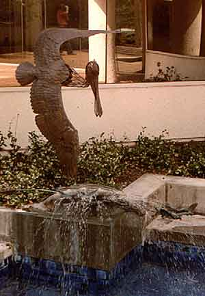 """Pelican Fountain"""