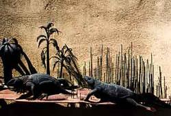 """Evolution of Birds"""