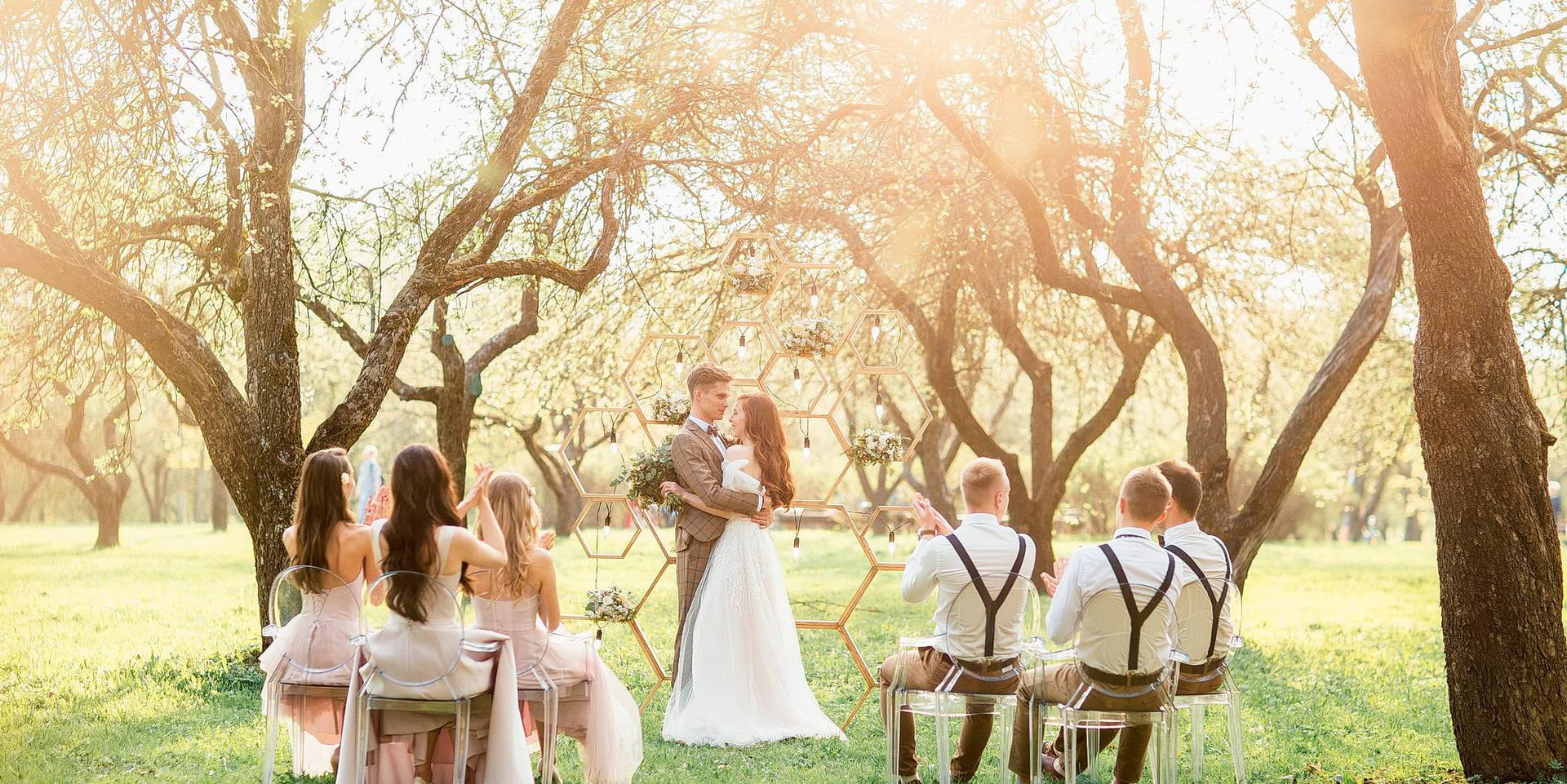 свадебная регистрация брака