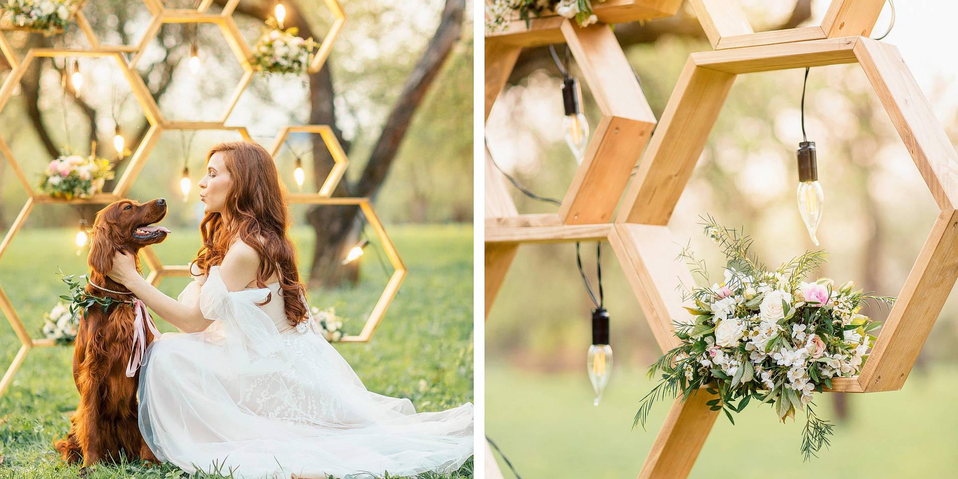 развлечение гостей на свадьбе