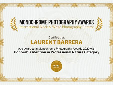Mention honorable au concours Monochrome Awards 2020