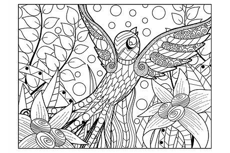#8 - Bird.jpg