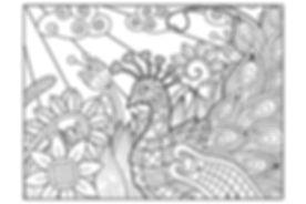 #7 - Peacock.jpg