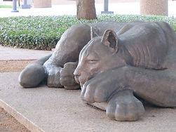 Sleeping Panther of Fort Worth