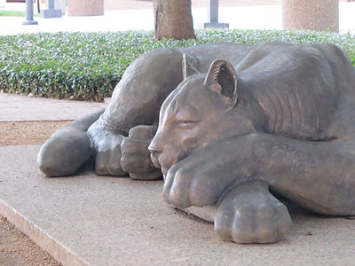 Bronze Sleeping Panther by Deran Wright