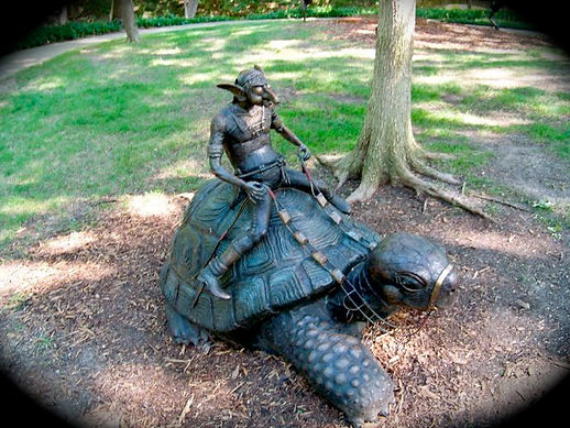 Turtle rider Pixie by Deran Wright