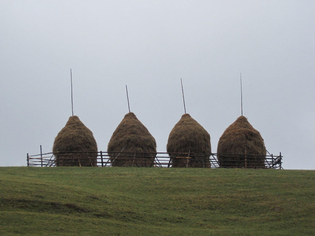 Four Haystacks Bucovina
