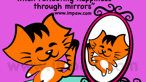 Nov 2, 2019 Happy people are beautiful when reflecting happiness through mirrors